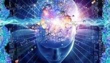 pensée holistique